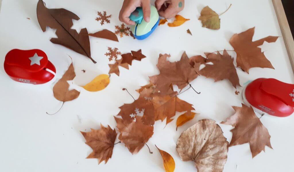 actividades para niños en otoño