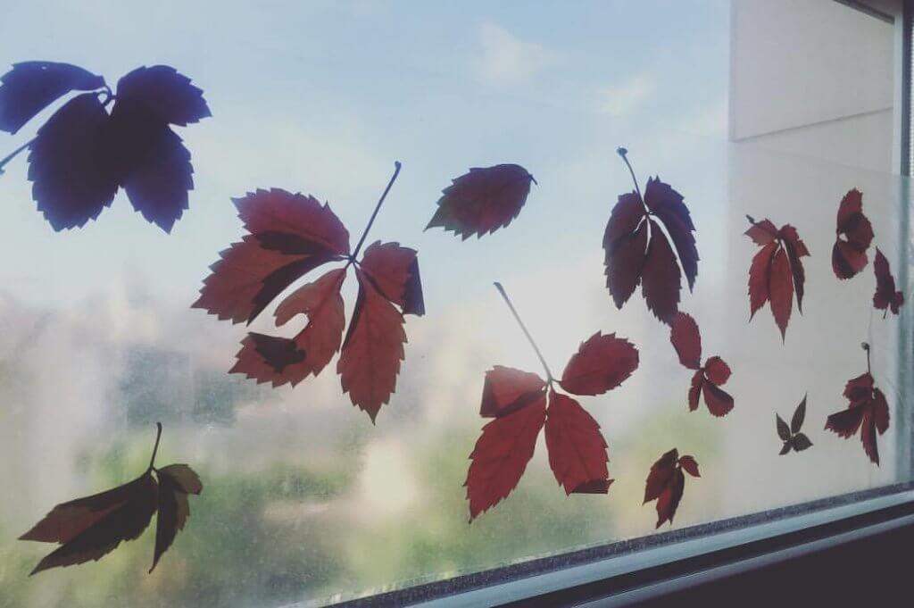 decorar ventanas con hojas de otoño