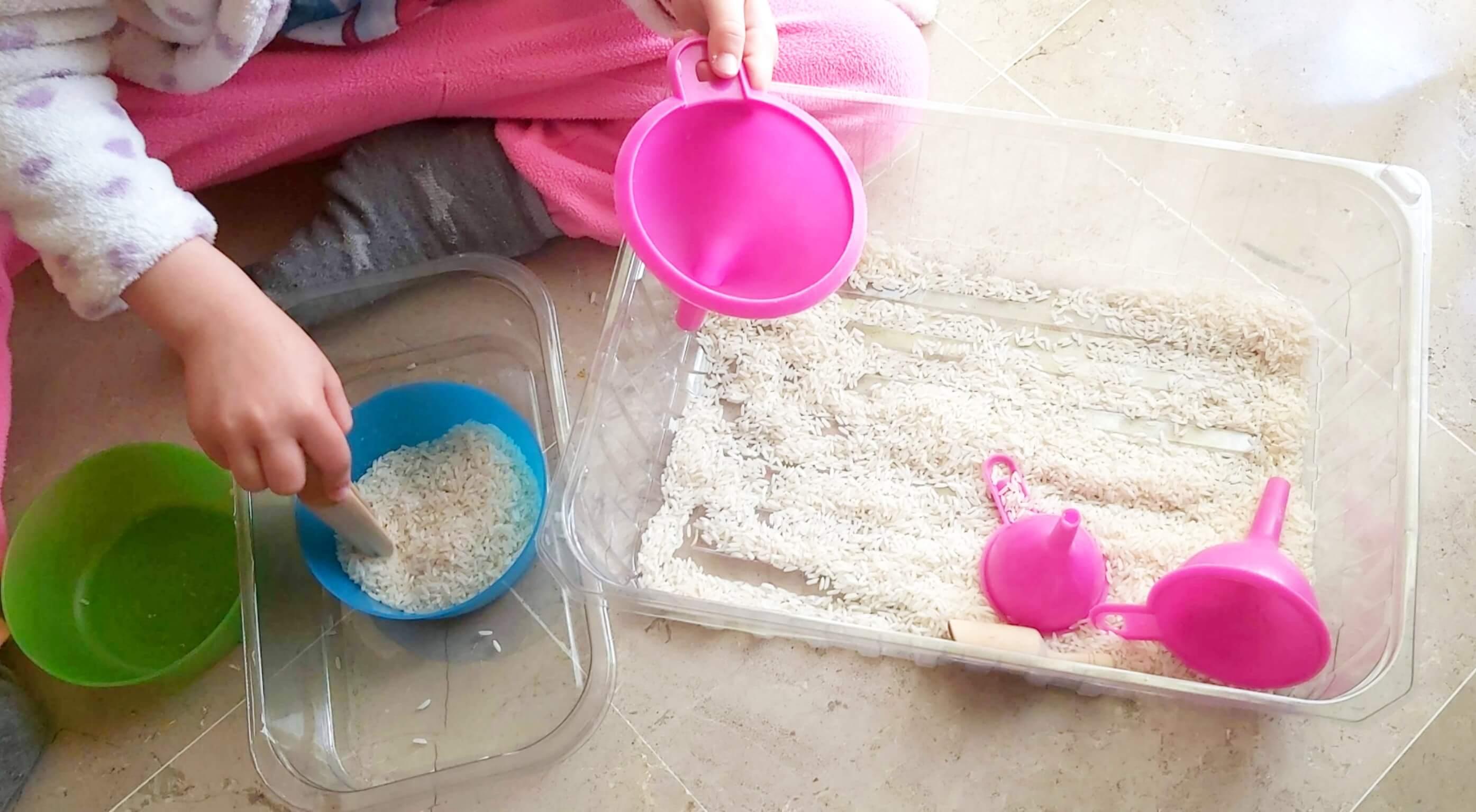 contenedor sensorial de arroz