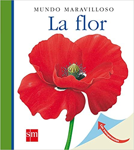 libro infantil sobre las flores